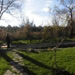 Ландшафтный дизайн и пруд (3)