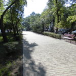 Озеленение городских улиц