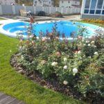 Созданный бассейн и ландшафтный дизайн