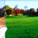 Рекультивация земель до и после