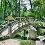Парковое озеленение